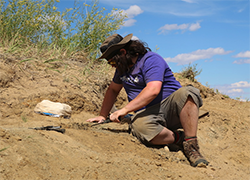 Kyle Atkins-Weltman, KU graduate assistant, digs at the Hell Creek Formation site. Credit: David Burnham.