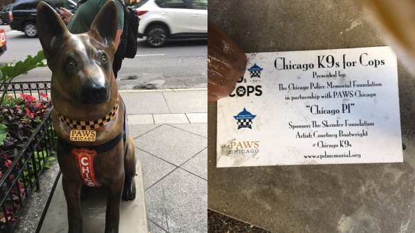 """There were over one hundred sponsors for """"K9's for Cops"""" in 2017. (Image: Monica Song/Vision Times)"""