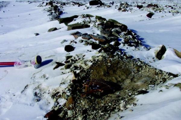 The sampling area at Larkman Nunatak. (Credit: Imperial College London)