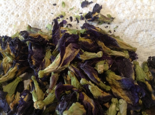 Butterfly Pea Blue Tea. (Image by Trisha Haddock).